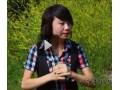 新疆互联网个人站长特别节目 (3691播放)